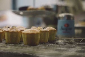 muffins at the Langland Cove