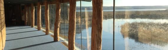 Llanelli WWT Wetlands